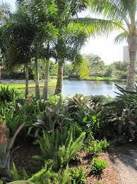 20 best landscaping images on pinterest florida landscaping
