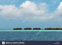 bungalows on a tropical island rasdhoo atoll indian ocean
