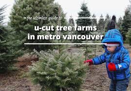 u cut christmas trees christmas ideas