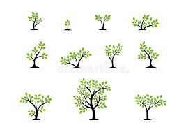 tree symbol tree logo concept set of trees nature wellness symbol icon design