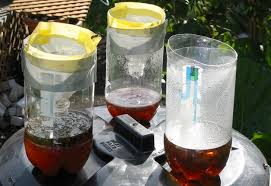Bee Deterrent For Patio Diy 5 All Natural Insect Traps And Deterrents For Those Pests