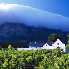 best vineyards in cape town u0027s winelands travel leisure