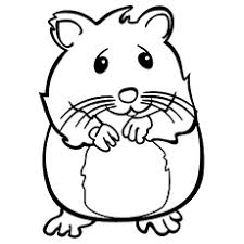 25 free printable hamster coloring pages