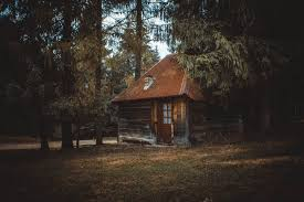wooden house on a forest free stock photo
