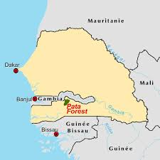 Dakar Senegal Map The Pata Forest Reserve In The Casamance A Window On A