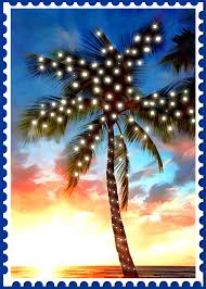 sunset palm tree with lights st painting by elaine plesser