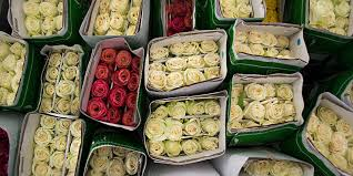 wholesale roses theafterhoursflowers new york wholesale flower markets