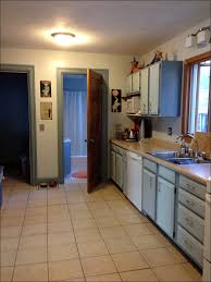 New Kitchen Cabinet Cost 100 How Much For New Kitchen Cabinets Get The Look Of New