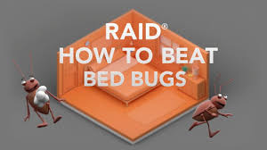 Bug Bombs For Bed Bugs How To Get Rid Of Bed Bugs Expert Help Raid Brand Sc Johnson