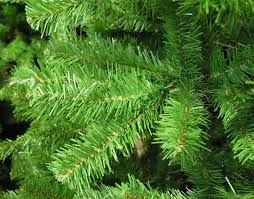valley spruce 9ft artificial tree