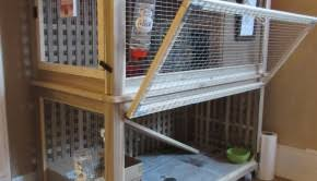 Diy Indoor Rabbit Hutch Kallax Rabbit House Ikea Hackers Ikea Hackers