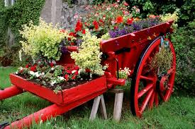 photos flower gardens ideas u2013 wilson rose garden