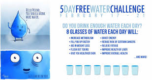 Water Challenge How To Do 5 Day Free Water Challenge Lifeaficionada