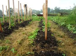59 best mulch images on pinterest straws mulches and garden ideas