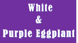 Brinjal Color Difference Between White And Purple Eggplant White Vs Purple