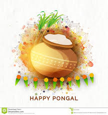Pongal Invitation Cards Mud Pot With Sugarcanes For Pongal Celebration Stock Photo