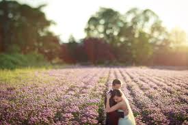 Portland Wedding Photographers Salem Lavender Field Wow This Is The Wedding I Want To The T