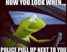 Kermit Meme Generator - heh heh hi there just too silly pinterest kermit memes