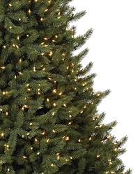 amazon com balsam hill vermont white spruce narrow premium