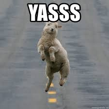 Yasssss Meme - yasss excited sheep meme generator