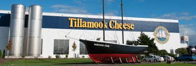 cheesecake factory hours on thanksgiving cheese factory tillamook