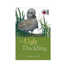 the ugly duckling book available in pakistan buy the ugly