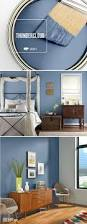 the project color app by the home depot allows you to try out