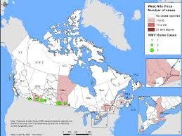 Eastern Canada Map by West Nile Virus And Other Mosquito Borne Diseases National