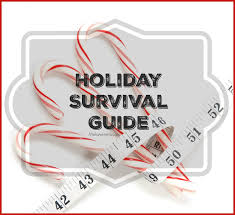 guide to holidays survival guide melanie mitro