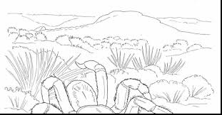 coloring pages biomes coloring pages mycoloring free printable