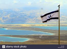 Israels Flag Bird Sits Atop Israeli Flag With View Of Dead Sea And Jordan From