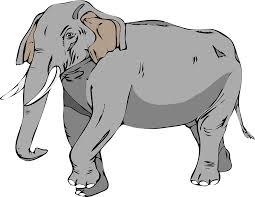 free vector graphic elephant large animal mammal free image