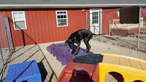 Red Barn Kennel Home Red Barn Pet Resort