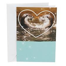 hallmark shoebox greeting card otters in