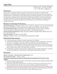 chronological resume minimalist design concept statement exles resume canada review therpgmovie essay thesis statement