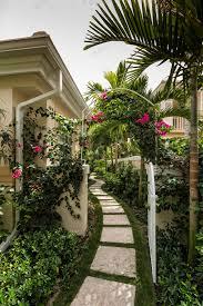 Tropical Climbing Plant - bougainvillea garden ideas landscape tropical with white trellis