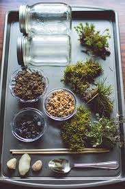how to make your own terrarium grotec landscape solutions