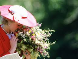 Diana Princess Of Wales Rose by The Hidden Symbolism In Princess Diana U0027s White Garden At