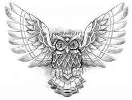 designs owl designs owl
