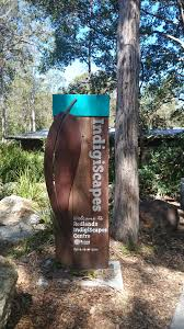 australian native plants brisbane redlands indigiscapes centre at capalaba brisbane