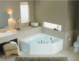 Alternative Bathtubs Considering A Master Bathroom Without A Tub Design Basics