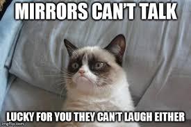 Mirror Meme - mirror mirror on the wall grumpycat tard tardersauce meme lol