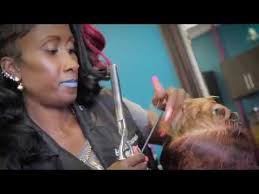 best black owned hair salons norfolk va shears lounge beauty salon in norfolk virginia youtube
