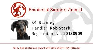 Comfort Dog Certificate Emotional Support Animal Id Service Dog Certifications
