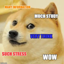 Study Memes - doge meme imgflip