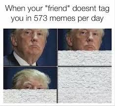Friend Memes - 33 best friendship friend memes images on pinterest ha ha