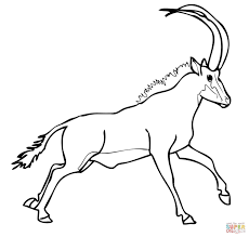 sable antelope from africa coloring page free printable coloring