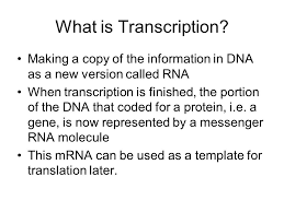 inquiry how is dna used to store and transmit cell information