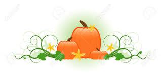 pumpkins border clipart pumpkin vine clipart collection