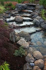 723 best water garden landscaping images on pinterest garden